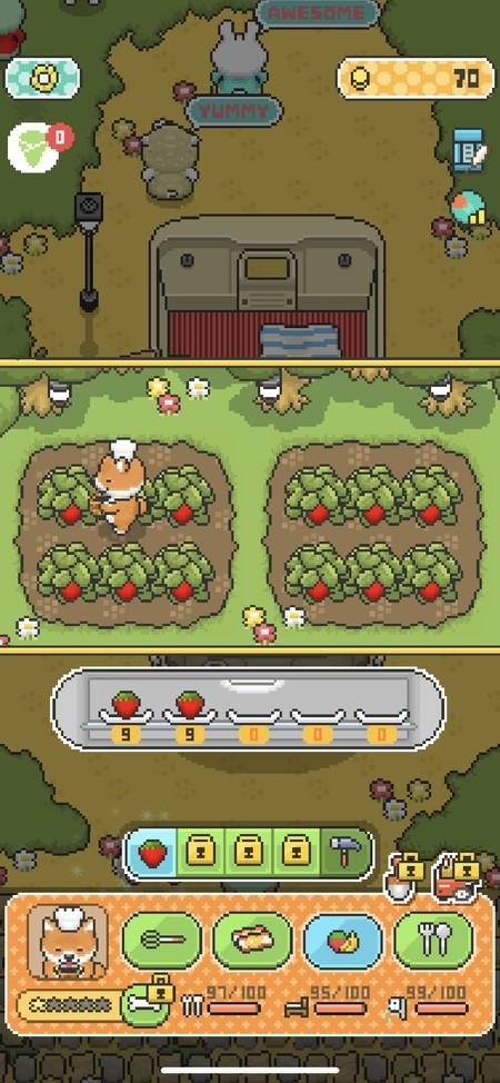 食材や果物を菜園から手軽に収集