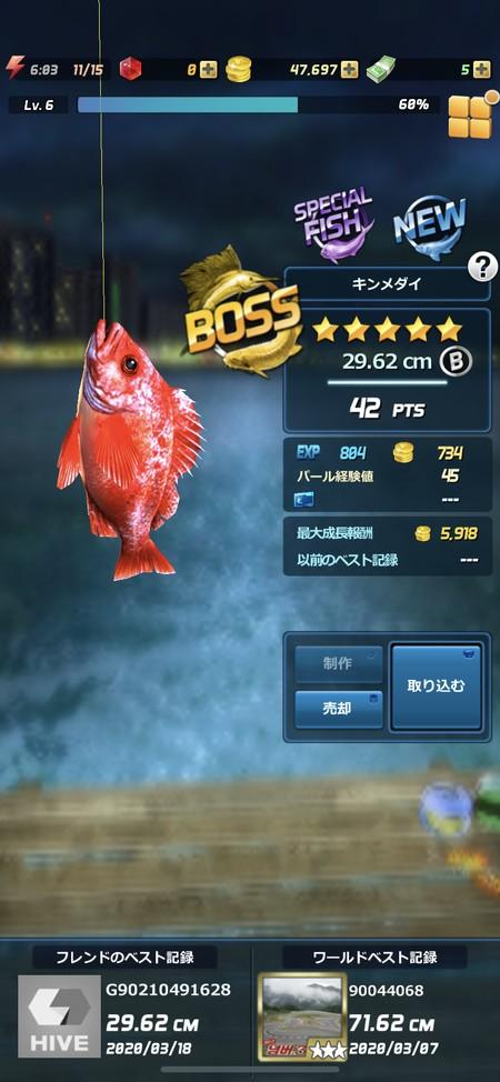 釣り上げに成功すれば魚のサイズが確認できる
